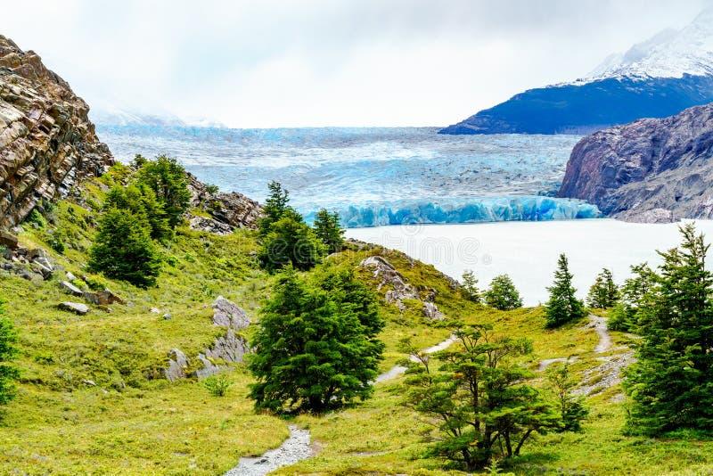 Gray Glacier au gisement de glace Patagonian du sud photo libre de droits