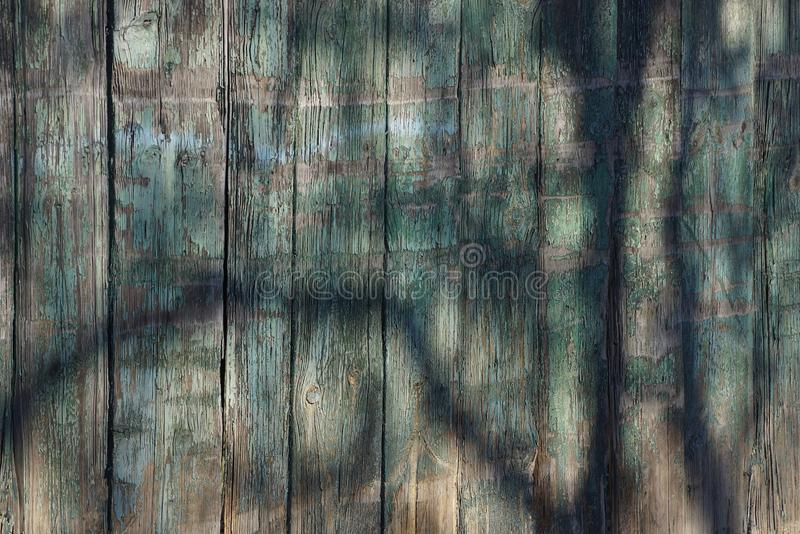 Gray green wooden texture of planks in the fence in the shade royalty free stock images
