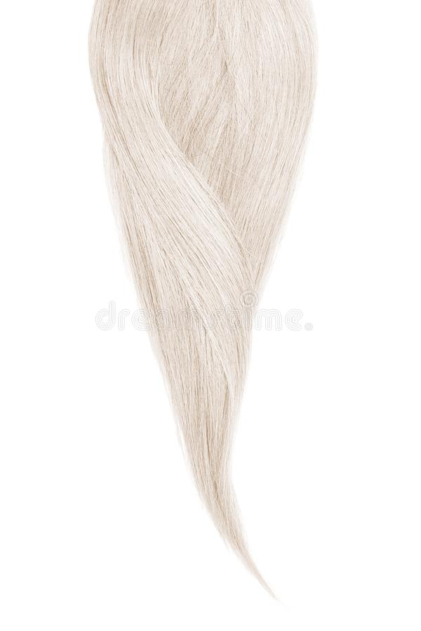 Gray hair, isolated on white background. Long beautiful ponytail stock image