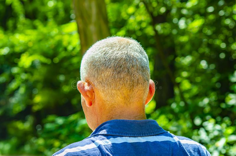 The gray-haired nape of an elderly man royalty free stock photography