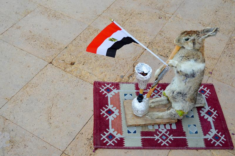 The gray hare stands on the rug holding the Egyptian flag in its paws and smoking a hookah, a scarecrow.  stock photo
