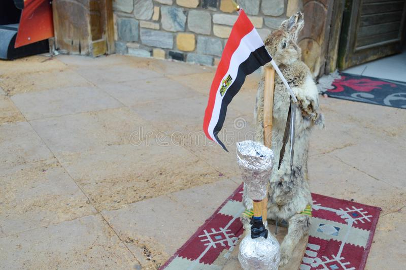 The gray hare stands on the rug holding the Egyptian flag in its paws and smoking a hookah, a scarecrow.  stock photography