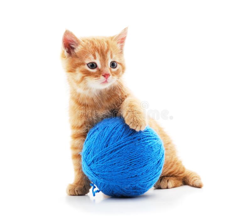 Gray kitten with a ball. On a white background stock photos