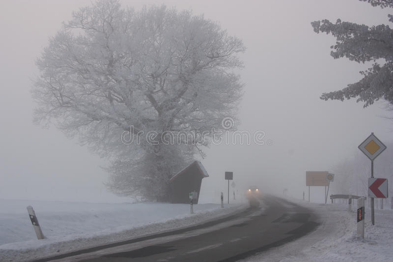 Gray Mist Stock Images