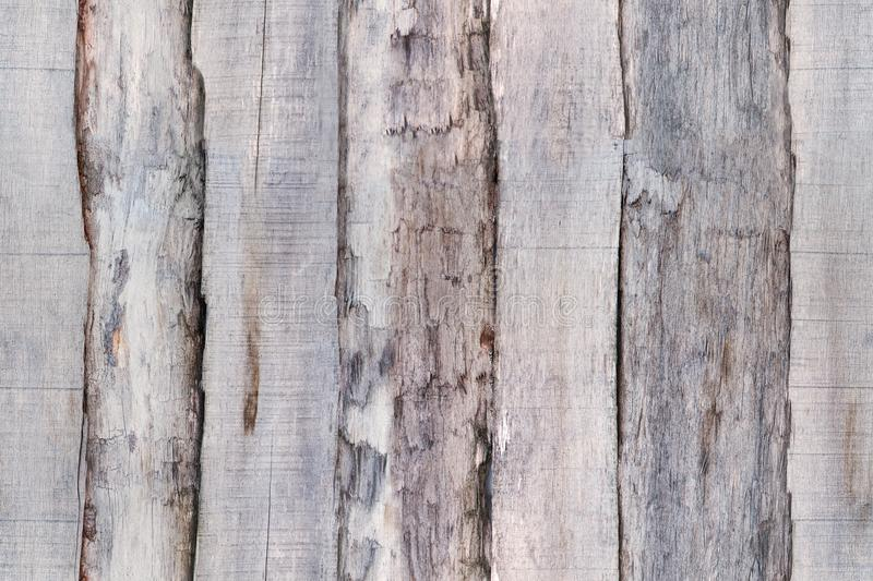 Gray old wood fence boards. Seamless texture for 3d modeling. Gray old wood fence gray boards. Seamless texture for 3d modeling Natural vertical pattern royalty free stock photos