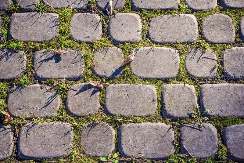 Gray paving stones stock photos