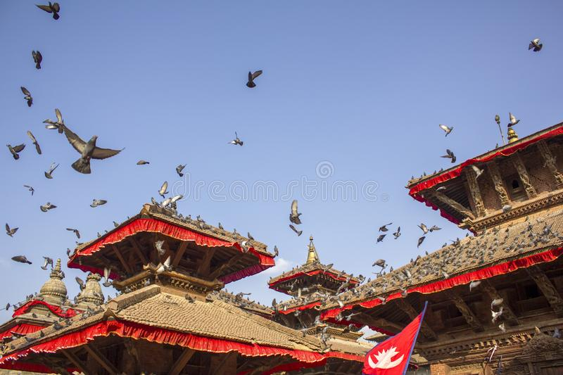 Gray pigeons sitting on the red roofs of ancient Asian temples with the Nepalese flag and flying against a clean blue sky royalty free stock photos