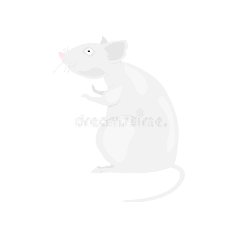 Gray rat symbol of the new year 2020 on a white background. Flat  illustration EPS10 vector illustration
