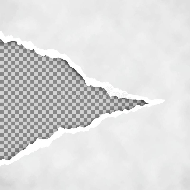 Gray ripped open paper with transparent background. Torn paper sheet. Torn paper edge. Paper texture. Vector illustration royalty free illustration