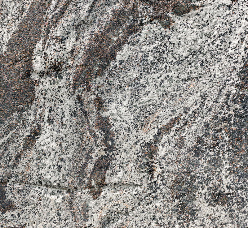 Gray rock texture royalty free stock photo
