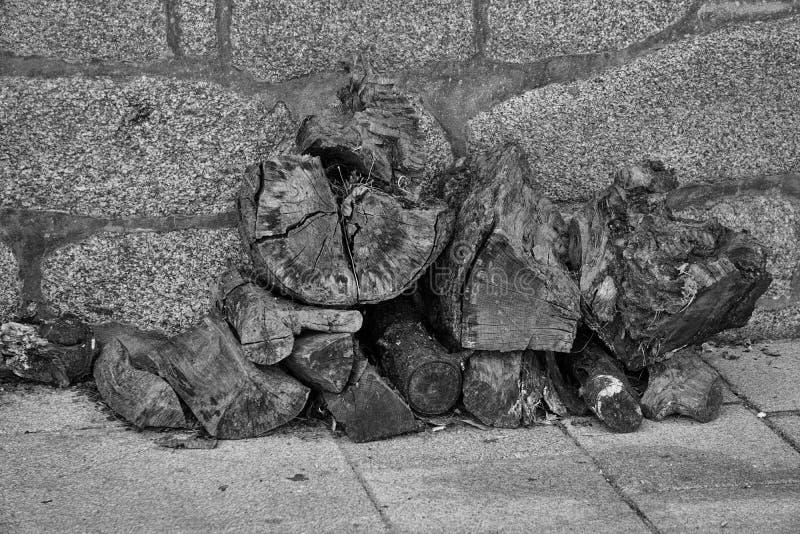 Gray Scale Logs Photography Free Public Domain Cc0 Image