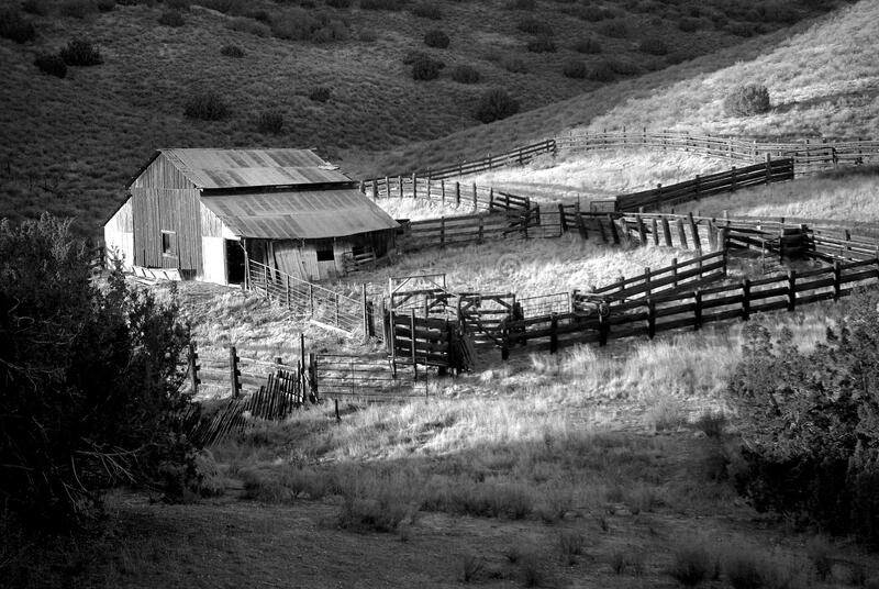 Gray Scale Photo of House on Field stock images