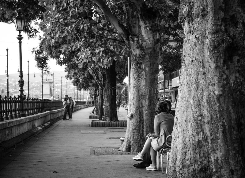 Gray Scale Photo of Woman Sitting Down in Chair Near Trees royalty free stock images