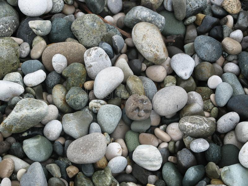 Gray sea pebbles on the beach. Gray sea pebbles of different shapes and sizes on the beach stock images