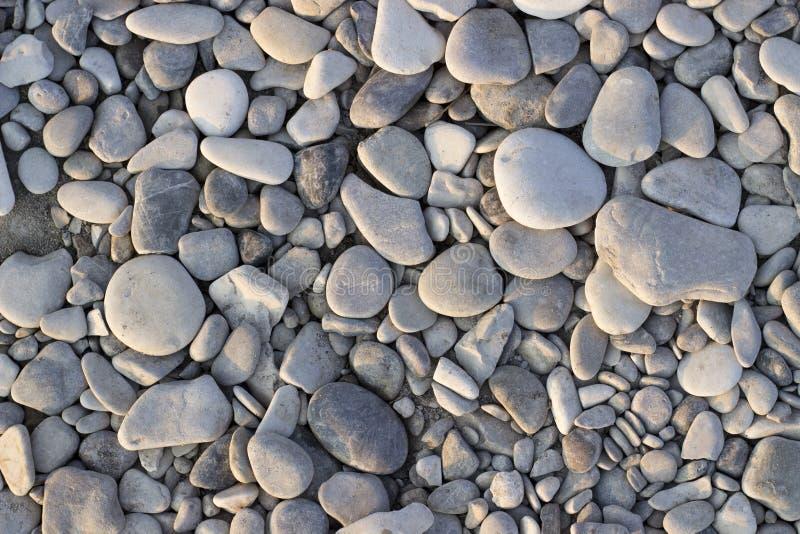 Gray sea stones. Dry gray sea stones on the seashore royalty free stock photos