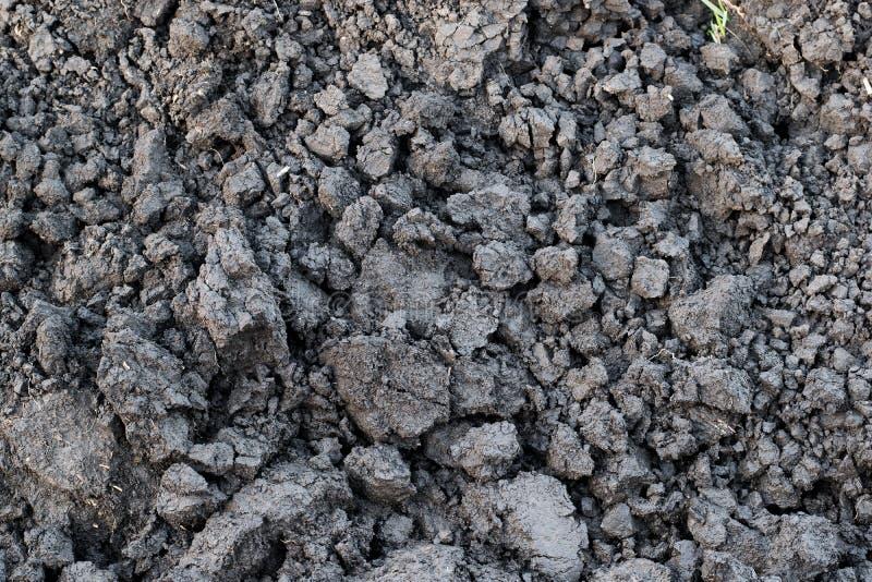 Gray soil, soil clod, dry soil, soil lump. Background from gray, dry soil lump stock photo
