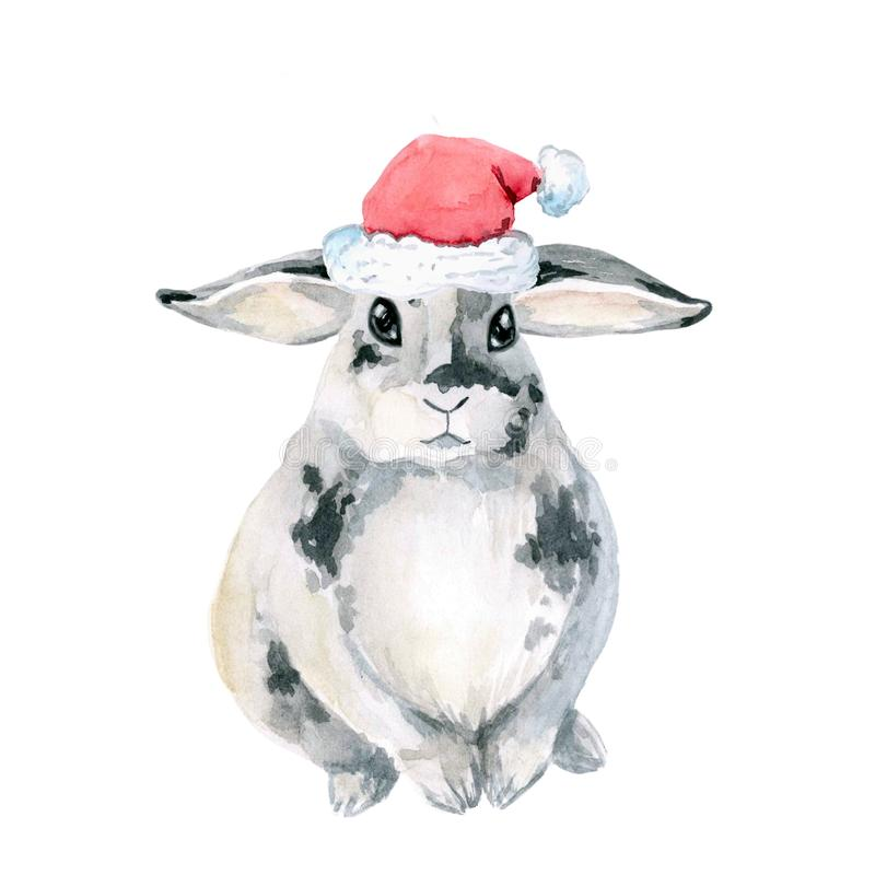 Gray spotted rabbit, sitting. Watercolor is isolated on white background. Christmas, New Year. cap of santa stock illustration