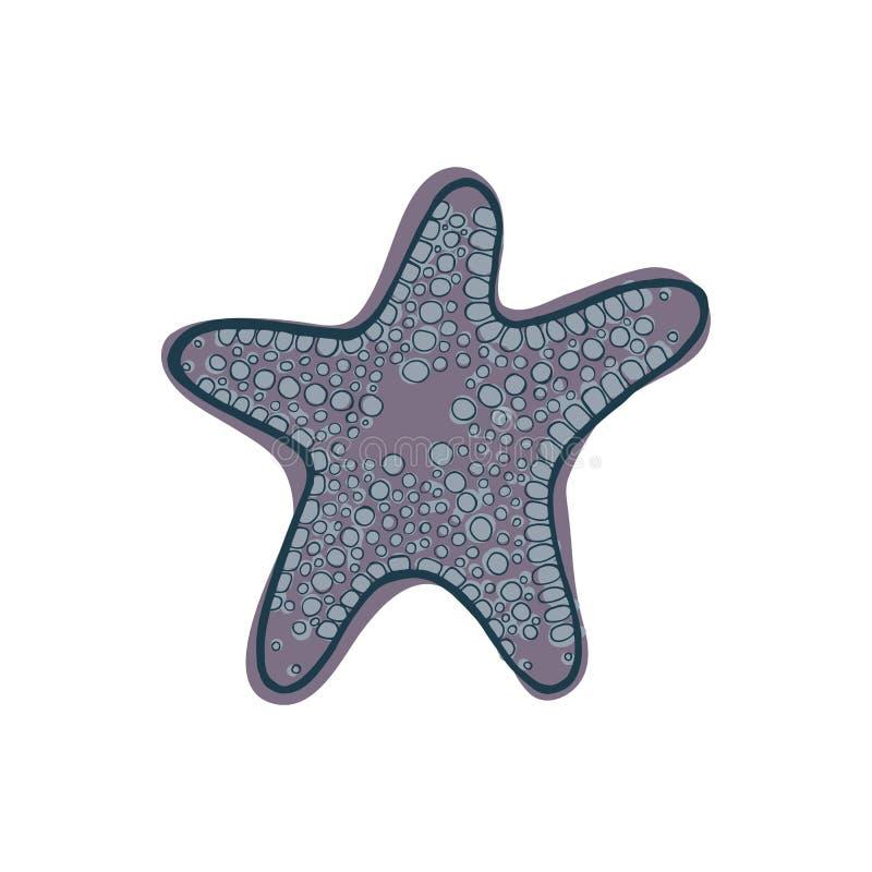 Gray starfish. royalty free stock photos
