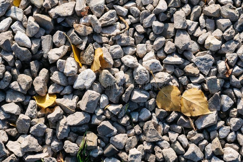 Gray stone, background, Wallpaper, stone close-up top view. In sunny clear weather with yellow autumn leaves stock photos
