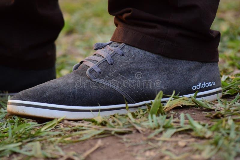 Gray White Adidas Sneaker Free Public Domain Cc0 Image