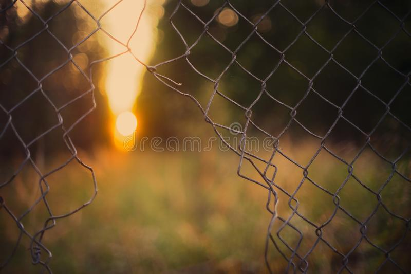 Gray Wire Fence stock photography