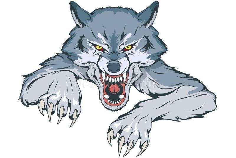 Gray Wolf apropriado como o logotipo para a mascote da equipe, esboço selvagem do desenho do lobo, Wolf Mascot Graphic ilustração do vetor