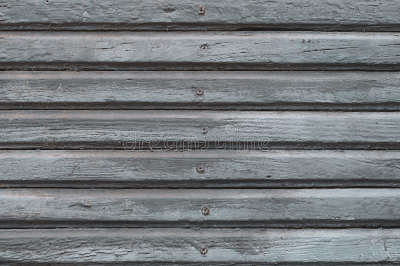 Gray wooden planks with hobnail. Grey old painted wood fence with spike. Gray ribbed wooden surface. Texture of oak planks. stock photo