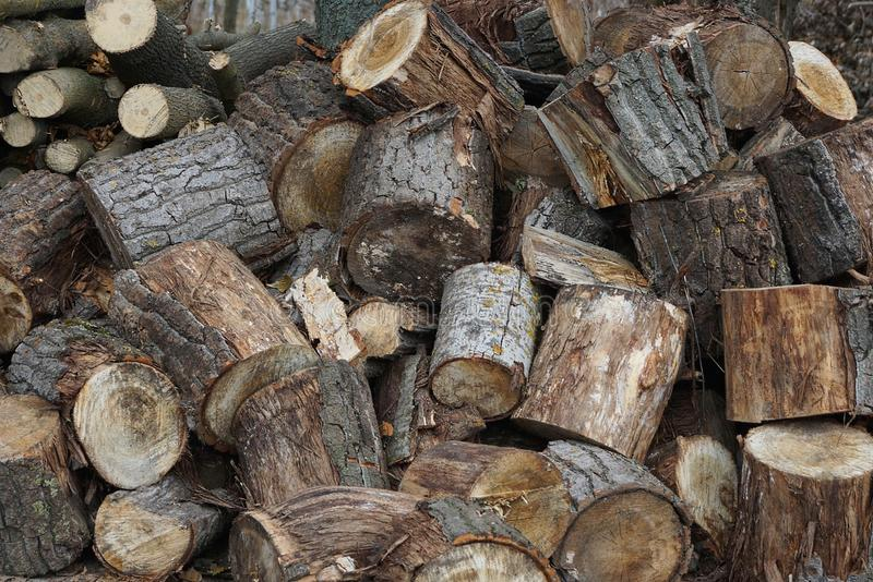 Gray wooden texture from a pile of logs. On the street stock images