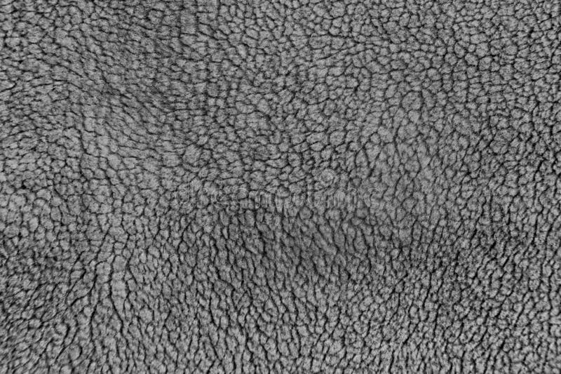 Gray wool texture royalty free stock photos