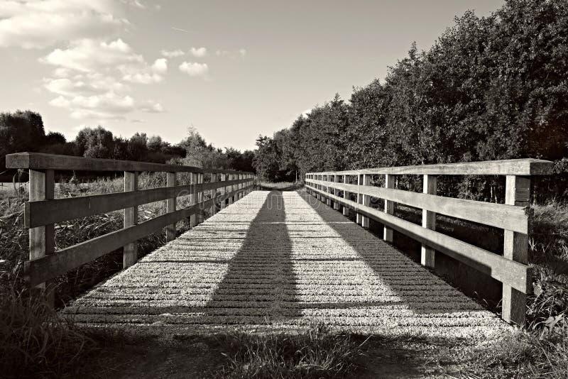 Φωτογραφία Grayscale της γέφυρας Ελεύθερο Δημόσιο Τομέα Cc0 Εικόνα
