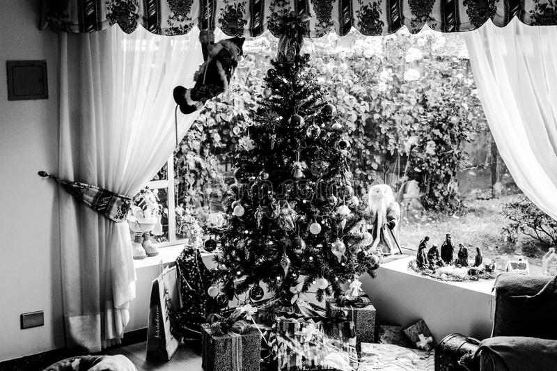 Grayscale Photo of Christmas royalty free stock images