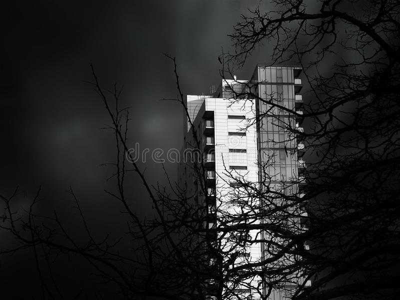 Grayscale Photo of Concrete High Rise Building royalty free stock image