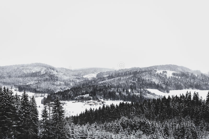 Grayscale Photo Of Foggy Covered Forest Mountain Free Public Domain Cc0 Image