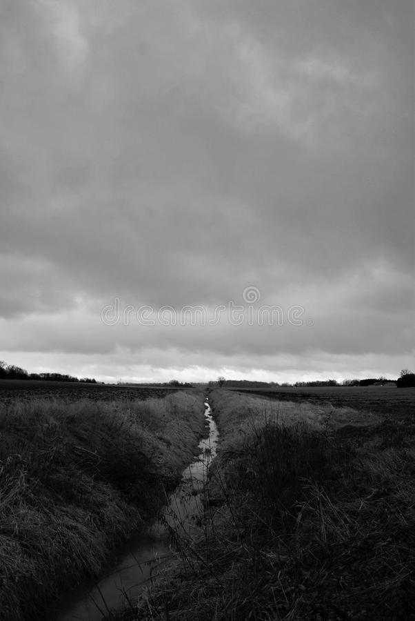 Grayscale Photo of Grass Field royalty free stock images
