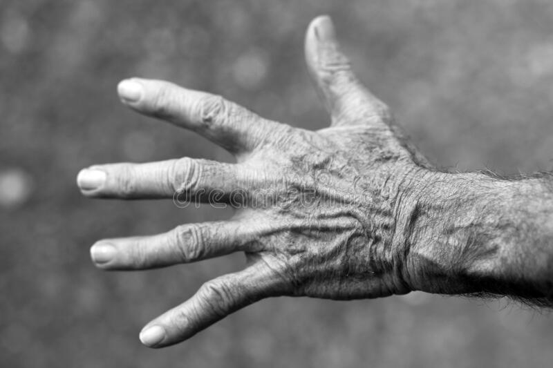 Grayscale Photo of Left Human Hand stock photography