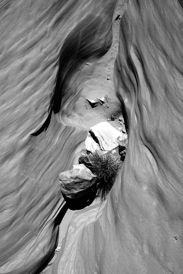 Grayscale Photography Of Antelope Canyon Free Public Domain Cc0 Image