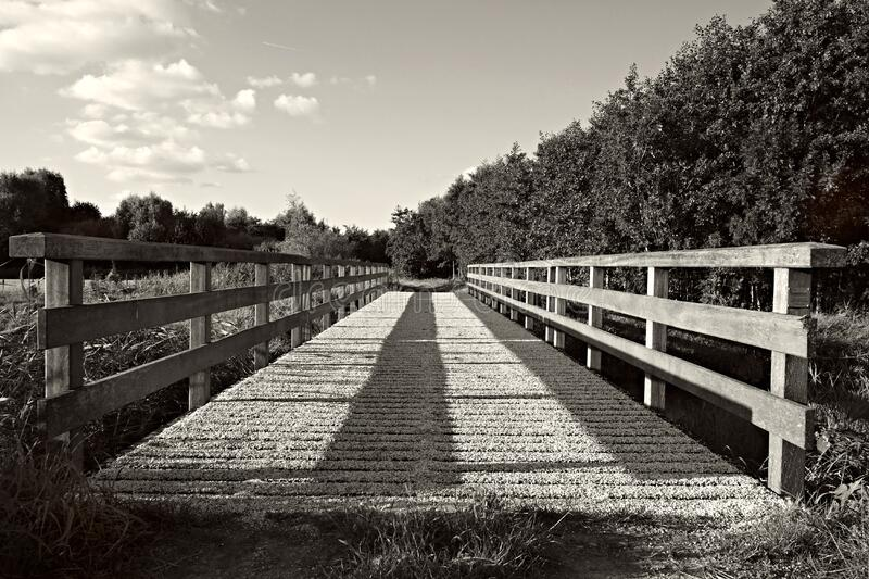 Grayscale Photography of Bridge stock photo