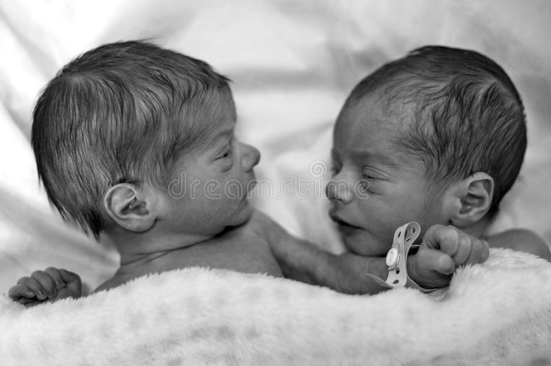 Grayscale Photography of Two Newborn royalty free stock photo