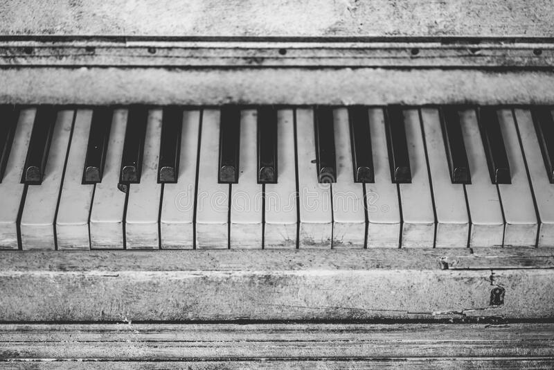 Grayscale Piano Keys royalty free stock image