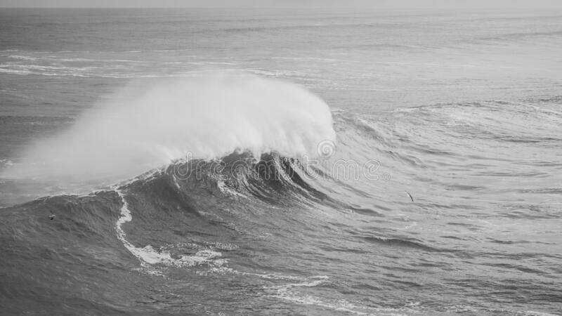 Grayscale shot of a big sea wave. A grayscale shot of a big sea wave royalty free stock photo