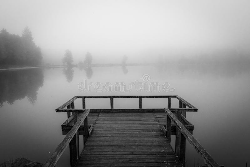Grayscale shot of a wooden dock near the sea surrounded by trees covered with fog. A grayscale shot of a wooden dock near the sea surrounded by trees covered royalty free stock image