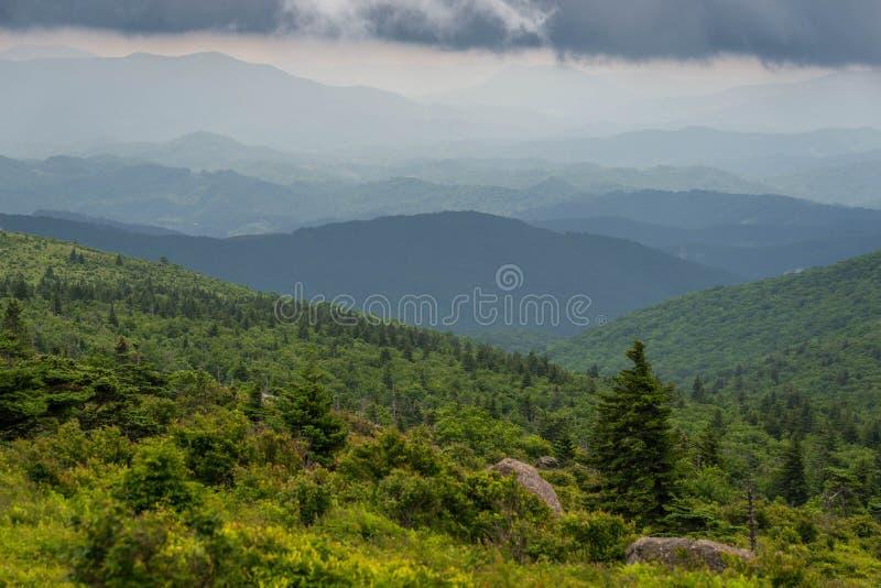 Grayson Highlands Summer Morning 6 photos stock