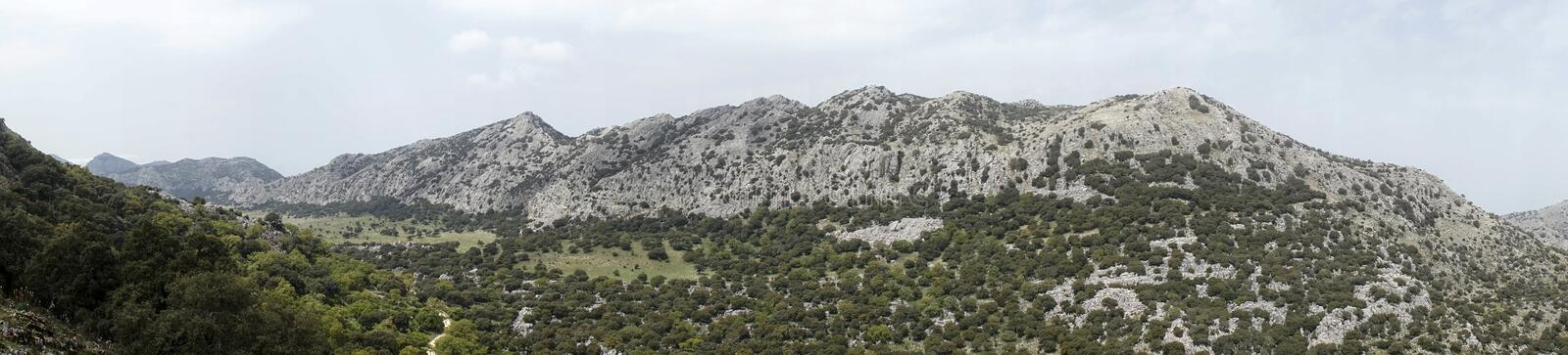 Grazalema natural park in the province of Cadiz, Andalusia, Spain royalty free stock images