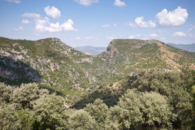 Grazalema Natural Park royalty free stock photography