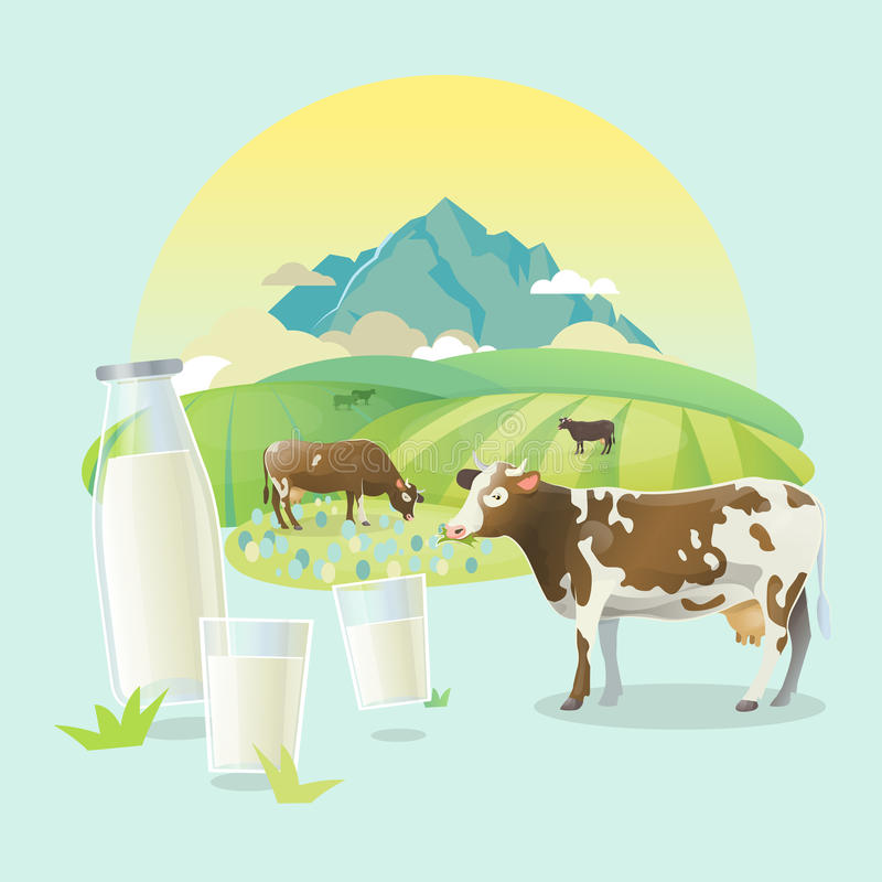 Graze cows on alpine meadows, on mountain landscape background. Vector illustration of cows on alpine rasen. Rural sunrise pasture landscape with happy cows vector illustration