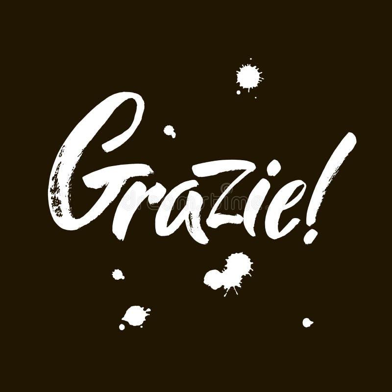 Grazie - спасибо в итальянке Надпись каллиграфии, белое слово на черной предпосылке Рукописное примечание вектор иллюстрация штока