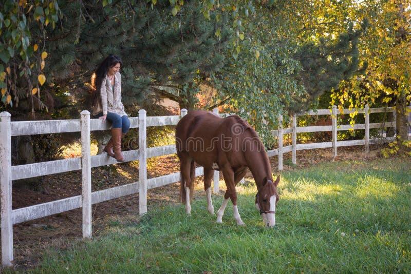 grazing stockfotografie