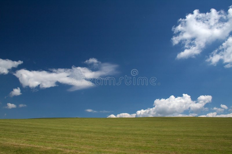 A Grazing Land On A Summer Day Stock Photography