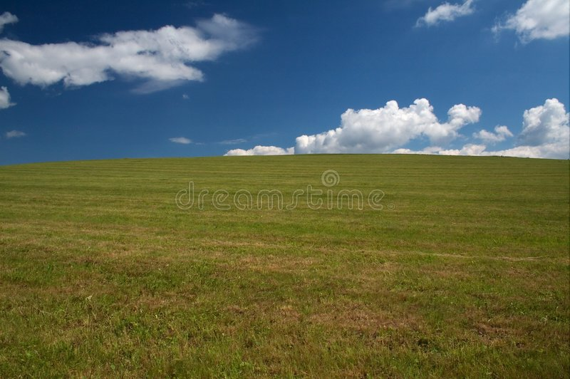 Download A Grazing Land On A Summer Day Stock Image - Image: 7612127