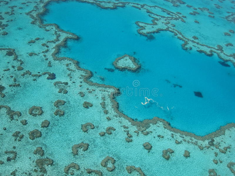 Great barrier reef stock photo